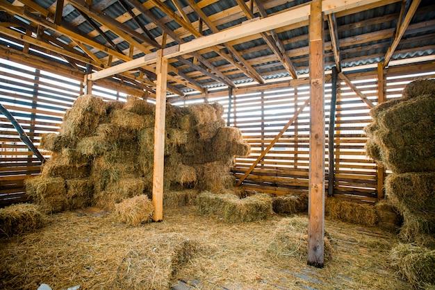 Stosy suchego siana w wiejskim drewnianym wnętrzu stodoły