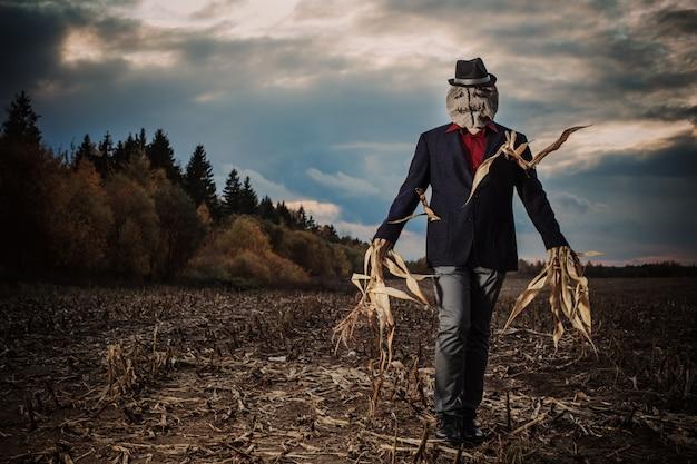 Strach na wróble stoi w polu jesienią na tle wieczornego nieba