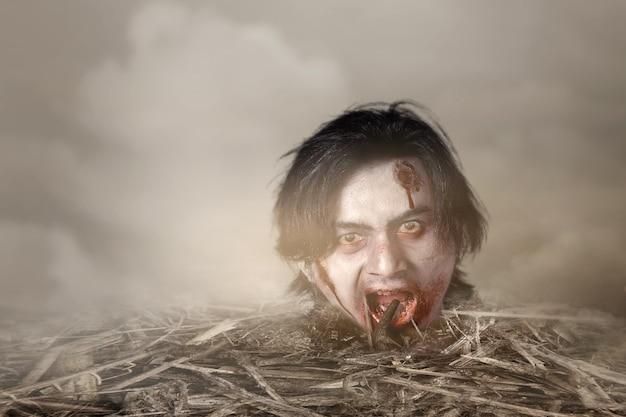 Straszna głowa zombie z krwią i raną podniesioną z ziemi na polu