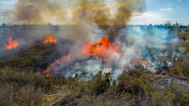 Strażacy gasili pożar w lesie. widok z lotu ptaka.