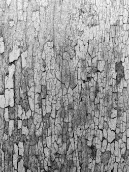 Streszczenie czarno-białe tło