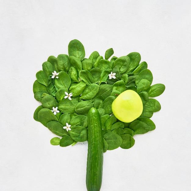 Streszczenie drzewo wykonane z ogórka i zielonego szpinaku zdrowa żywność dietetyczna i odchudzająca koncepcja góry