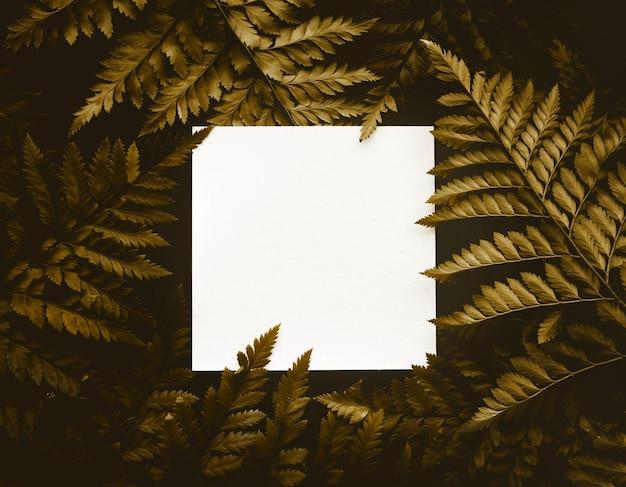Streszczenie egzotycznych liści paproci w kolorze złotym i białym tle przestrzeni kopii.nature koncepcje projektowania.