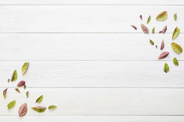 Streszczenie małe liście na stole