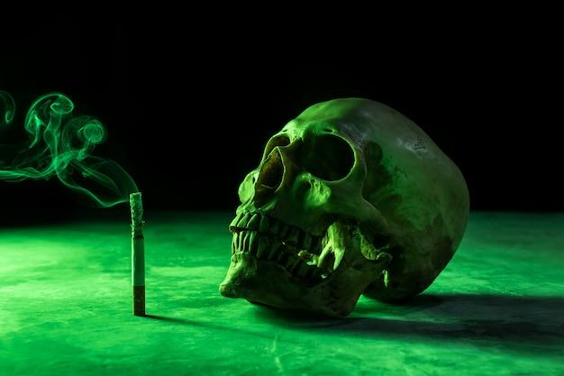 Streszczenie martwa natura czaszka szkieletu z płonącym papierosem, przestań palić kampanię z copyspace.