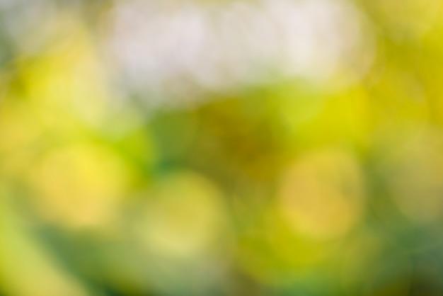 Streszczenie rozmycie zielone tło