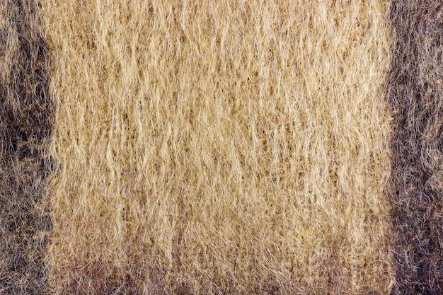 Streszczenie tekstura brązowej wełny z dzianiny w czarne paski. tło z naturalnej wełny