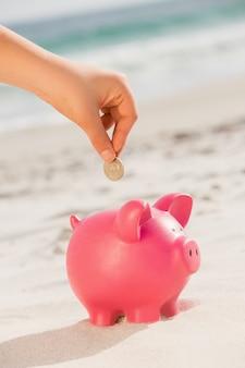Strony wprowadzenie monety do skarbonki