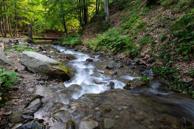 Strumień w górskim lesie przepływa przez kaskady kamieni.