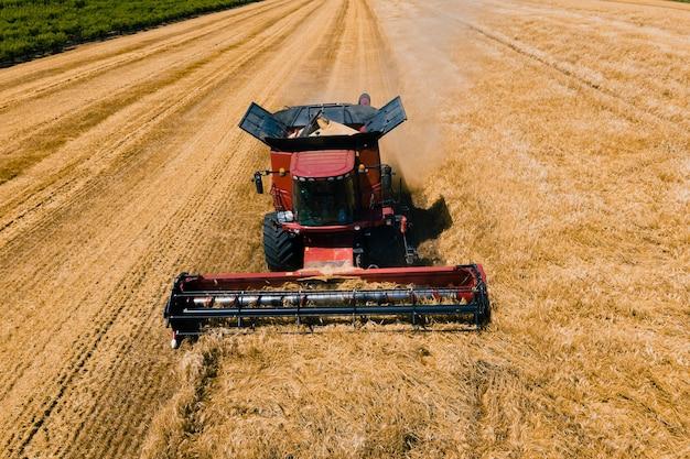 Strzał dronem nad kombajnem pracującym na polach pszenicy podczas zbioru kombajn zbożowy przy pracy żniw...