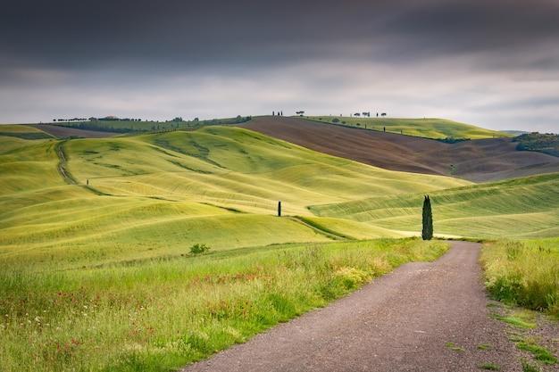 Strzał krajobraz zielonych wzgórz w toskańskiej dolinie toskania we włoszech w ponurym niebie