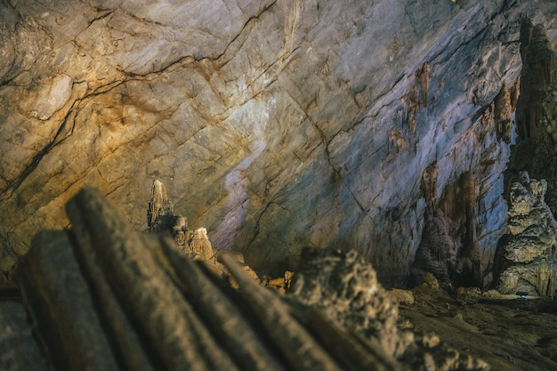 Strzał zbliżenie formacje na ścianie paradise cave w wietnamie