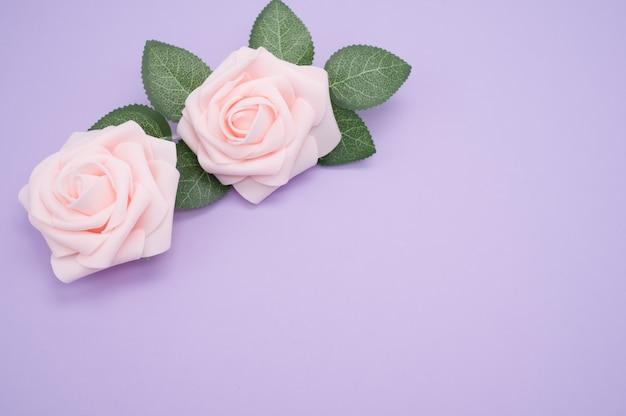 Strzał zbliżenie różowych róż na białym tle na fioletowym tle z miejsca na kopię