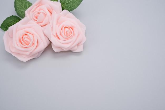 Strzał zbliżenie różowych róż na białym tle na niebieskim tle z miejsca na kopię