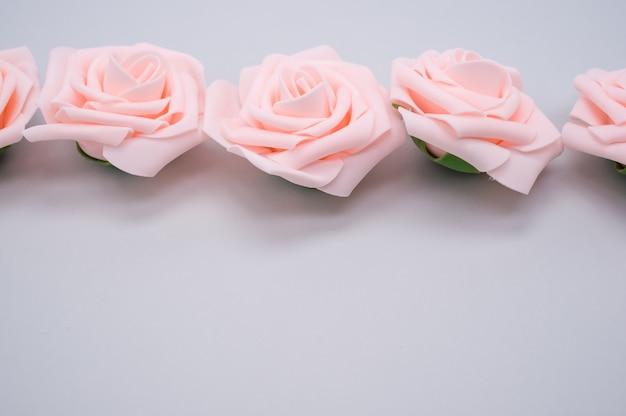 Strzał zbliżenie rzędu różowych róż na białym tle na fioletowym tle z miejsca na kopię