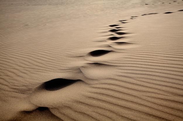 Strzał zbliżenie śpiew piasku na pustyni w słoneczny dzień