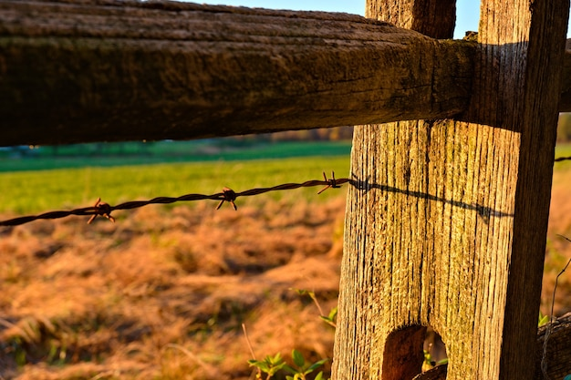 Strzał zbliżenie z drutu kolczastego na drewniany płot w polu w promieniach słońca