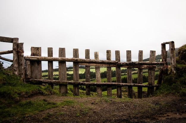 Strzelający z bliska drewniany płot z trawiastym polem i drzewami w tle