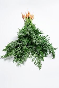 Studio fotografii małego bukietu marchewki, z zielonymi szczytami na białym tle.