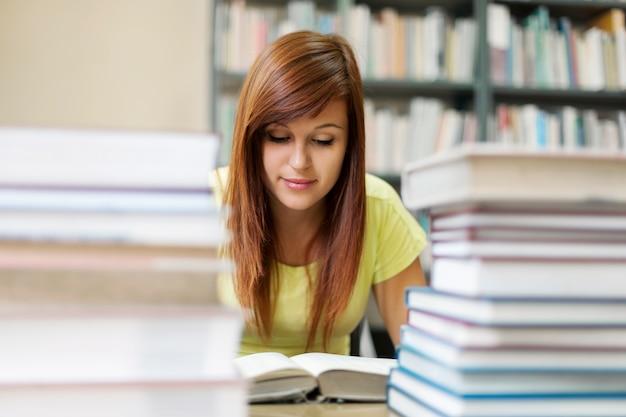 Studium biblioteczne