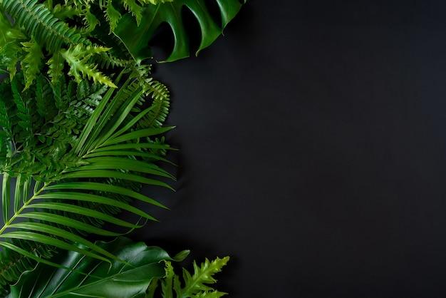 Stwórz kreatywną ramę płaskiej tropikalnej natury umieść kokosowe monstera i paprocie na betonie