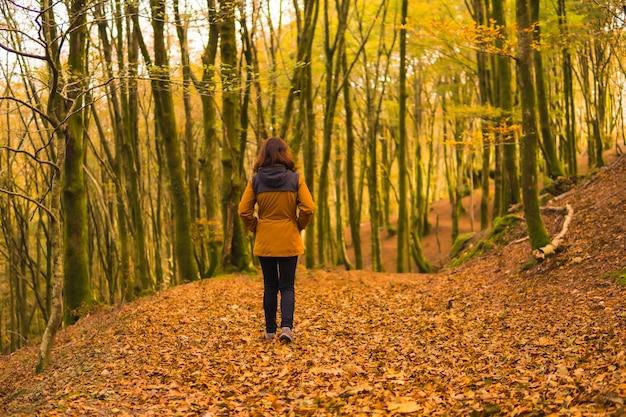 Styl życia, młoda kobieta w żółtej kurtce idąca jesienią do tyłu leśną ścieżką. las artikutza w san sebastin, gipuzkoa, kraj basków. hiszpania