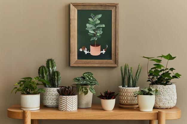 Stylowa kompozycja wnętrza przydomowego ogrodu z ramą, wypełniona mnóstwem pięknych roślin, kaktusów, sukulentów, roślin powietrznych w różnych donicach designerskich. koncepcja ogrodnictwa domu.