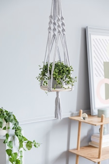 Stylowe i minimalistyczne wnętrze salonu boho z drewnianą półką, designem i eleganckimi dodatkami, ręcznie robiony wieszak na doniczki z makramy. botanika i wystrój domu z dużą ilością roślin.