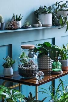 Stylowe wnętrze salonu wypełniało mnóstwo pięknych roślin, kaktusów w różnych wzorach doniczek na brązowej półce retro. kompozycja dżungli ogrodowej przydomowej. nowoczesny wystrój domu. koncepcja kwiatowy.