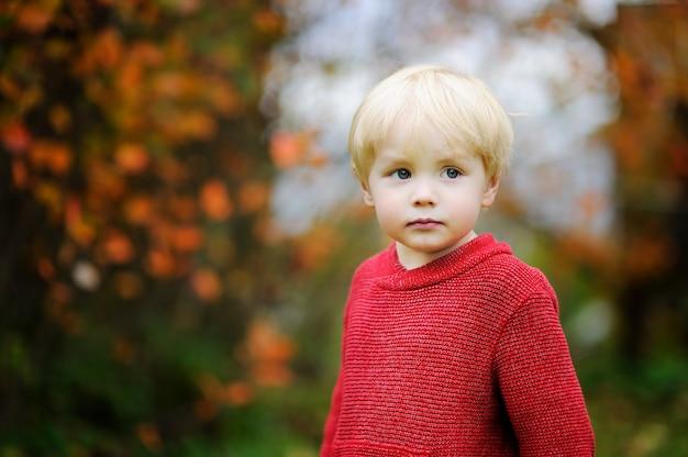Stylowy chłopiec w czerwonym swetrze. portret dziecka malucha w upadku