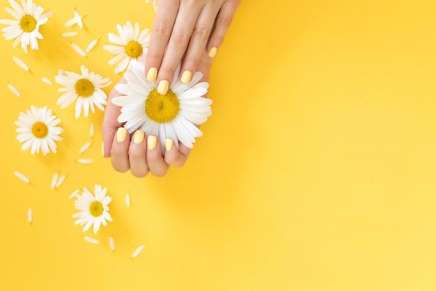 Stylowy modny manicure żeński. stokrotka kwiat w dłoni z pięknym manicure.