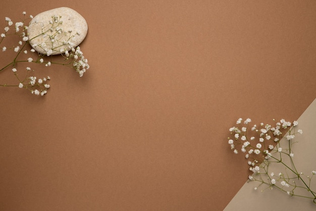 Sucha gałąź kwiatowa i kamień na jasnobrązowym.