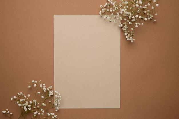 Sucha gałąź kwiatu na jasnym i ciemnym brązowym tle. trend, minimalna koncepcja z copyspace do widoku z góry tekstu