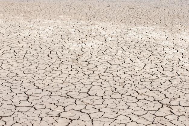 Sucha gleba tekstura tło