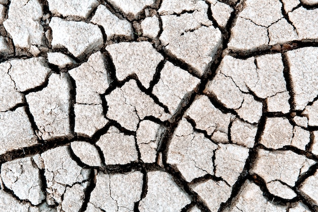 Sucha i popękana ziemia koncepcja globalnego ocieplenia koncepcja suszy