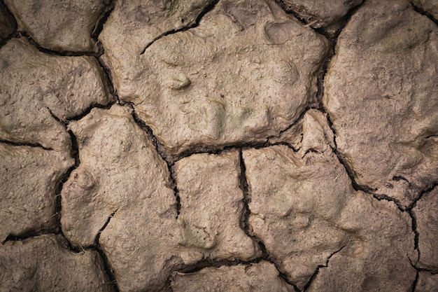 Sucha popękana powierzchnia, widok z góry. pęknięcie tła ziemi