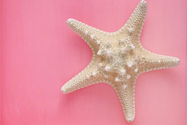 Sucha rozgwiazda na różowo