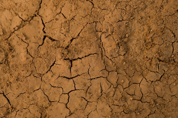 Sucha tekstura gleby, ściana błota