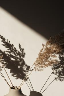 Sucha trzcina pampasowa w stylowym wazonie. cienie na ścianie
