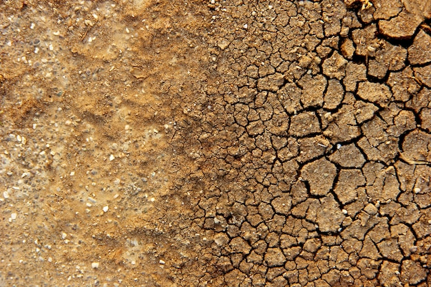 Sucha ziemia
