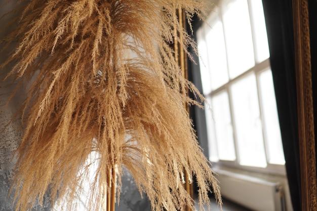 Suche gałęzie trzciny w pomieszczeniu. wystrój pokoju w stylu skandynawskim. okna na rozmytym tle