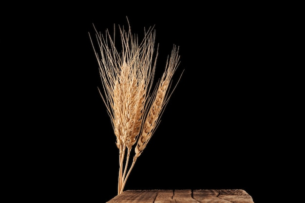 Suche kłosy pszenicy lub żyta i rocznika deska do krojenia na czarnym tle.