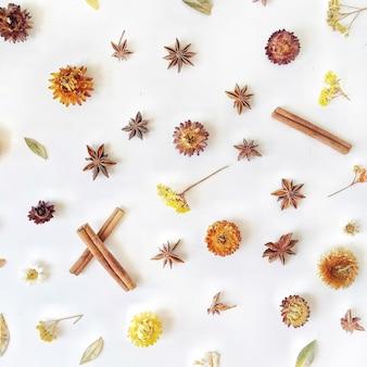 Suche Kwiaty, Cynamon I Kardamon Wzór Na Białym Tle Premium Zdjęcia