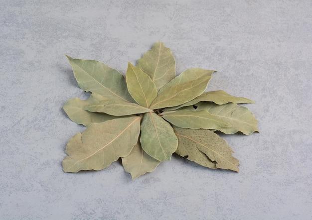 Suche zielone liście laurowe na białym tle na betonowym tle.