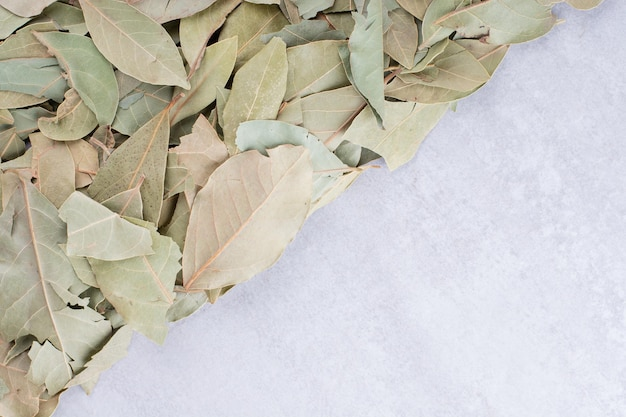 Suche zielone liście laurowe na talerzu na betonowym tle. zdjęcie wysokiej jakości