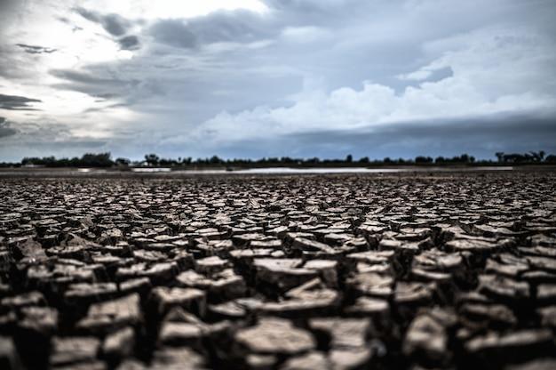 Suchy ląd z suchą i popękaną ziemią