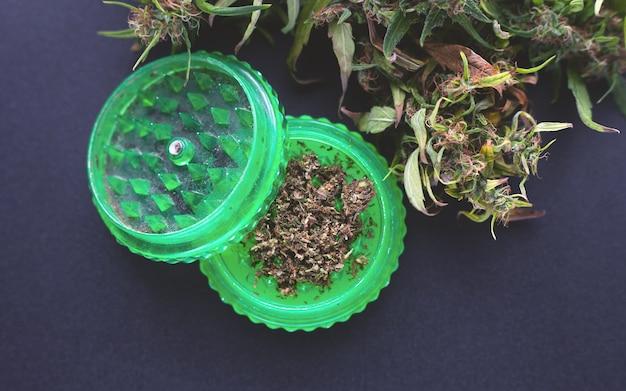 Suchy pączek konopi i młynek, klasyczne użycie marihuany.