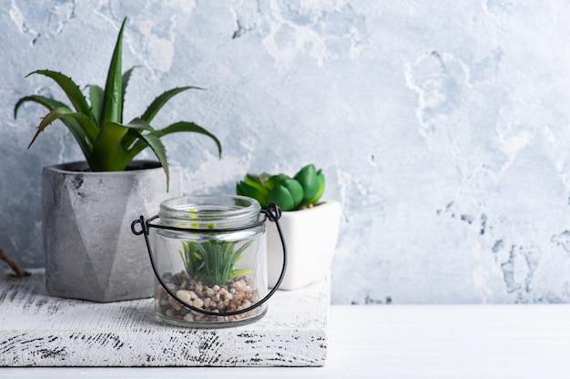 Sukulenty w różnych donicach betonowych i szklanych na białej półce.