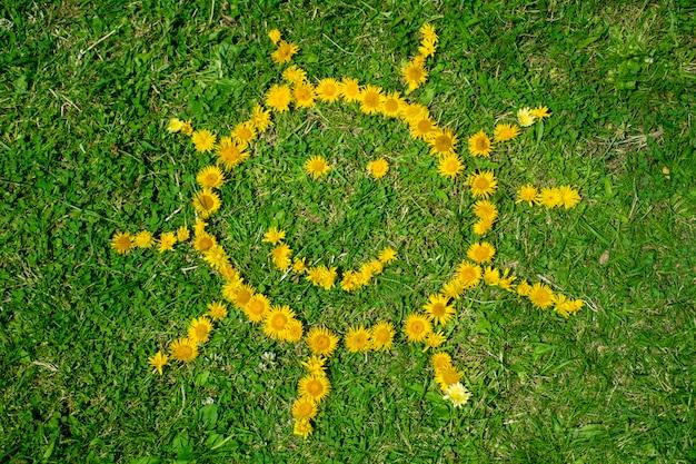 Sun wykonane z żółtymi kwiatami