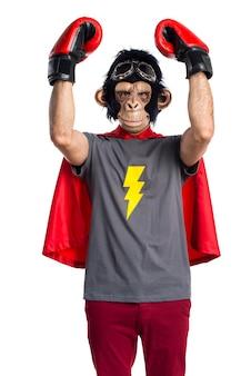 Superhero małpa człowiek z rękawic bokserskich